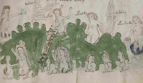 Una pagina del Manoscritto Voynich