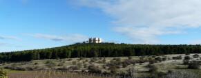 """Castel del Monte in un progetto """"bandiera"""" del Parco dell'Alta Murgia"""