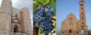 Buy Puglia, itinerario di Arte e Cultura, sulle tracce di Federico II